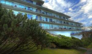Terrace View Apartments - 2 Bedroom (corner suite) Apartment...