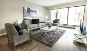 One Bedroom Suites Applewood Village for Rent - 3805...