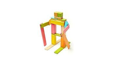 Tegu 24 Piece Magnetic Wooden Block Set Tints