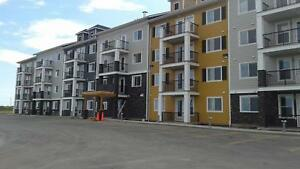 Save $100 off Your Rent Each Month - 2 Bedroom Apartment for Ren