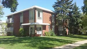 1 Bedroom -  - The Executive - Apartment for Rent Edmonton
