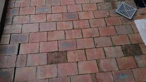 PAVER'S CLAY Yarrawarrah Sutherland Area Preview