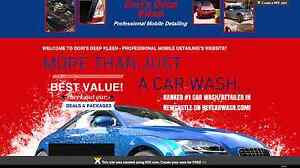 Dori's Deep Kleen - Professional Mobile Detailing Muswellbrook Muswellbrook Area Preview
