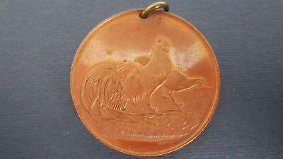 Medaille Bronze Club deutscher österreichisch-ungarischer Geflügelzüchter(L65)