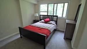 2 Bed near Muskoka Beach Rd & Winewood Ave in Gravenhurst!