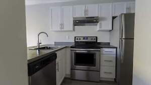 One Bedroom Suites Hi Level Place for Rent - 11005 98 Avenue NW