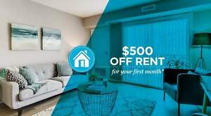 Pet-Friendly Two Bedroom One Bath Den with In-suite Laundry...