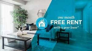 Pet-Friendly One Bedroom One Bath with In-suite Laundry for...