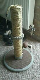 cat scratch tower
