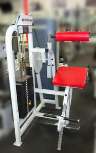 Commercial Fitness Equipment Life Fitness back Extension