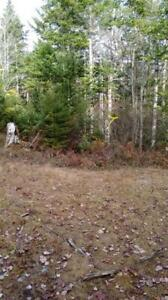 NEW PRICE   34 acres for only $43,000.00 - walk to water