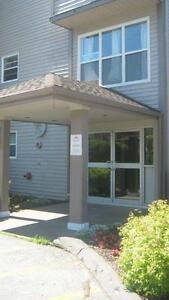 75 Collins Grove, 2-levels for Rent or for Sale