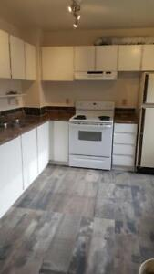 Newly Renovated - Gorgeous 3 Bed Room Townhouse in Millwoods