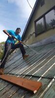 PAINT SEALANT APPLICATIONS ON METAL BUILDINGS AN ROOFS