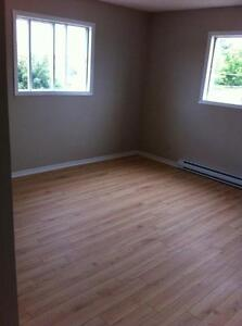 APPARTEMENT A LOUER - APARTMENT FOR RENT - LIBRE - AVAILABLE Gatineau Ottawa / Gatineau Area image 3