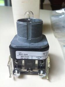 Allen Bradley Pilot Light 800T-Q24