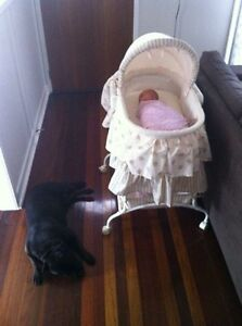 Baby bassinet - the first years Lawnton Pine Rivers Area Preview