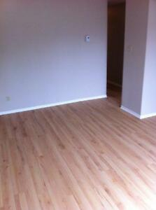 APPARTEMENT A LOUER - APARTMENT FOR RENT - LIBRE - AVAILABLE Gatineau Ottawa / Gatineau Area image 2