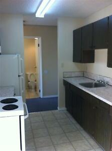 Spacious Comfortable 2 Bedroom-Madison Apartment