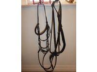 English leather cob size bridle with Myler bit