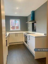 3 bedroom house in Frances Terrace, Bishop Auckland, DL14 (3 bed) (#984424)