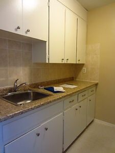 2 Bedroom Apartment for Rent on the Thames **Old South London** London Ontario image 4