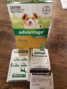 Advantage for puppies & small dogs up to 4kg South Plympton Marion Area Preview
