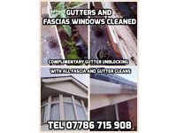 GUTTERS, FASCIAS, CONSERVATORY, WINDOWS CLEAN COVENTRY, NUNEATON, BEDWORTH, RUGBY, HINCKLEY