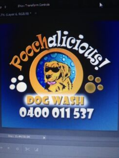 Poochalicious dogwash and grooming Singleton Rockingham Area Preview