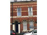 1 bedroom in Eblana Street, Belfast, BT7 (#882600)