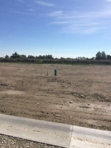 Magrath  Two Huge Lots for Sale