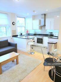 1 bedroom flat in King Street, London, W6 (1 bed) (#1049386)