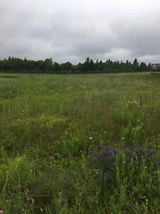 Wanted to Buy Land for Mini Home / Small lot will Do.