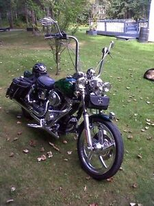 Custom all out wideglide