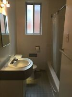 1 Bedroom. Close to McGill (20 min. metro), walk to UdeM and Hec
