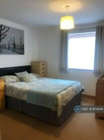 1 bedroom flat in Hawkins Road, Colchester , CO2 (1 bed) (#972849)
