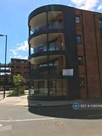 2 bedroom flat in Rotherhithe New Road, London, SE16 (2 bed) (#1099766)