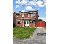 3 bedroom house in Grange View, Harworth, Doncaster, DN11 (3 bed) (#1099555)