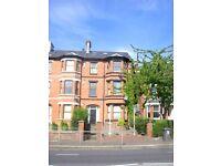 Apartment 2, 438 Antrim Road - 2 Bedroom