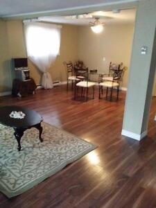 Split Level house for rent -- $1100 per month