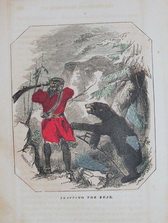 1857 ENGRAVING AMERICAN KENTUCKY HISTORY TRAPPING BEAR