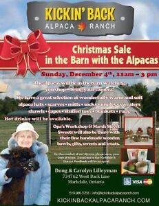 Christmas Sale in the Barn with the Alpacas Kitchener / Waterloo Kitchener Area image 1