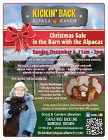 Christmas Sale in the Barn with the Alpacas