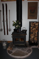 Chimney Sweep, Wood/Gas sevices and Wett Inspections