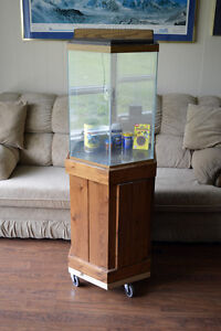 30 Gallon Aquarium with Lid, Light and Stand / Cupboard.