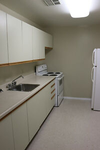 1 Bedroom Apartment for Rent in Kingston at John Counter Place Kingston Kingston Area image 8