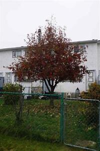 **New Price** Was $135,500 now $125,000!