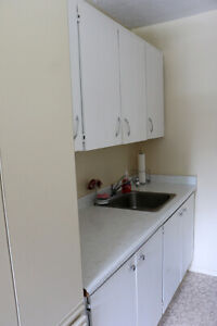 Non-Smoking Mount Forest 2 Bedroom Apartment w/ Balcony for Rent