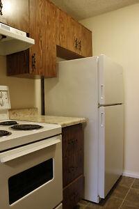 Windsor 1 Bedroom Apartment for Rent: Storage, pet friendly