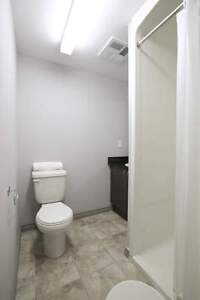 Fully Furnished Room w/ private bathroom at 1 Columbia St. W Kitchener / Waterloo Kitchener Area image 2